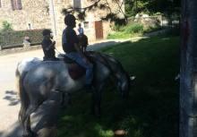 Ferme du château de Laneffe, gîte accueil cavalier